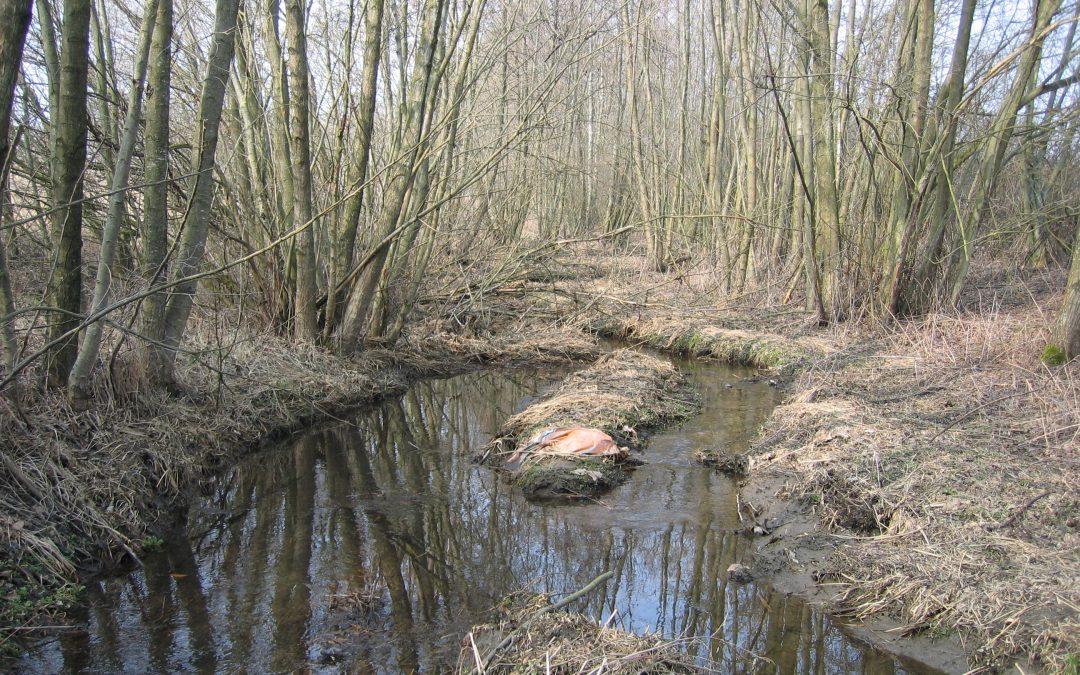 Stadt Neustadt an der Donau / Gewässerentwicklungsplanung